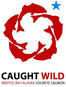 caught wild 2x3 sticker
